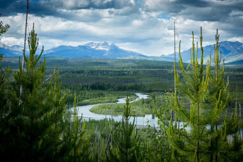 """Montana's Flathead River: why the Designation of """"Wild & Scenic"""" is Important"""